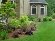 JF Tree Care Service LLC